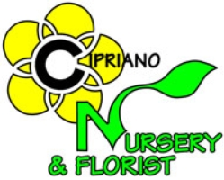Cipriano Nursery and Florist